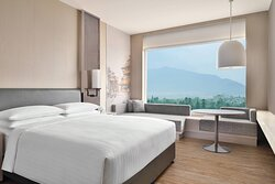 King Guest Room - Mountain View