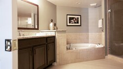 Bathroom with spa tub and walk-in shower.