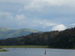 Periyar Lake...elephants cross here during certain seasons