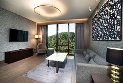 Suite - siting area