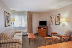 One bedroom suite with sofa sleeper