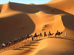 camel trekking in south of morocco
