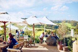 Mornington Peninsula Cycle Tour - Winery Lunch