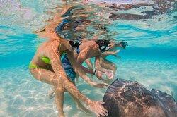 Red Sail Sports-  Snorkellers- Stingray City - Grand Cayman