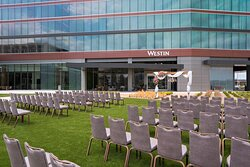 Festival Lawn - Outdoor Wedding Setup