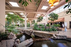 Take in lush greenery in our lobby Atrium