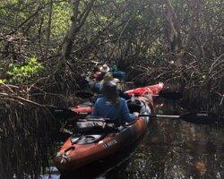 Relaxing cruise through the FL mangroves