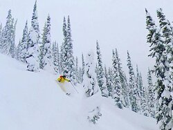 Powder day in the Purcell Mountains, Purcell Mountain Lodge.