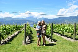 50th Parallel Estate Winery | Lust 4 Luxury Tours
