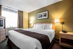 Coast Premium King Suite