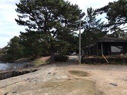 虎ヶ崎燈台方向から、つばきの館を撮りました。