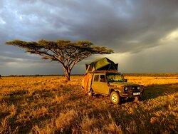 Tanzania/Serengeti (Seronera) - October 2020