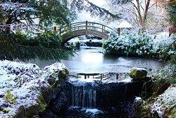 Stobo Japanese Water Garden