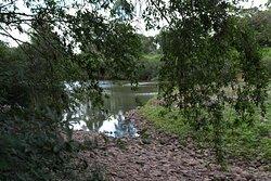 Na margem do rio.