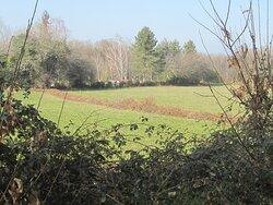 Dolmen du Bois Plantaire. Vue 69. Hameau La Rondière. Lieu-dit Le Boiron. Orsennes 36190.