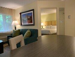 Queen One Bedroom Suite Living Room and Bedroom