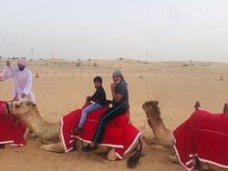 Camel Safari! Enjoy the beauty of desert in a traditional way!