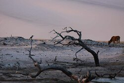 Lençóis Maranhenses / Sandwalkers - Atins