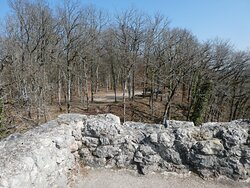 a view from the ruins towards the picnic area