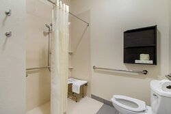 Accesible Bathroom With Roll in Shower