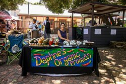 Daphne makes organic ointments, creams, lip balms and sauces at the Sunday Market
