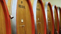 Una botte racchiude in sé vini che raccontano storie, storie di un territorio, storie di persone.