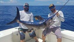 Swordfishing!