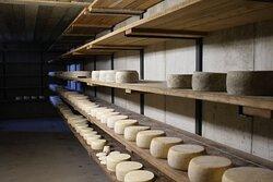 la cantina dei nostri formaggi