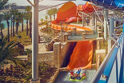 Aquaventure Waterpark - Odyssey of Terror