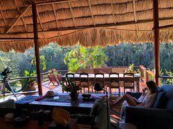 Beautiful Jungle Oasis