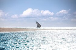 Local Dhow sailing in ocean