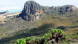 It is one of the most popular places to visit in Kenya which attracts a large number of adventurous tourists who wish to indulge in arduous activities like climbing, trekking, and hiking.