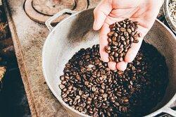 čerstvě upražená káva