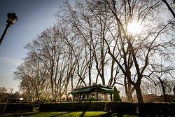I meravigliosi Giardini di Portoghesi Splendid Portoghesi's Gardens