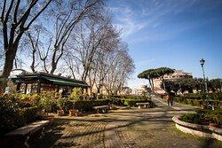 I meravigliosi Giardini di Portoghesi da un'altra angolazione Another take on the splendid Portoghesi's Gardens