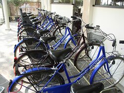Free use of bicicles