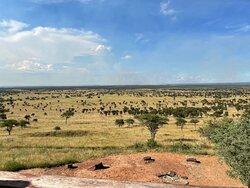 Incredible Property Overlooking Serengeti