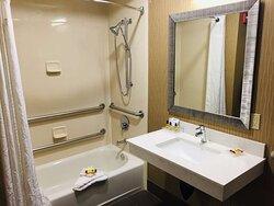 King ADA Bathroom