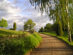 Small gravel roads for hiking or biking