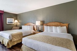 Pet friendly room with two queen beds