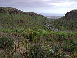 Cesta k dunám v Maspalomas