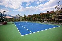 Outdoor tennis court with garden view