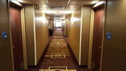 Hallway at Holiday Inn Express Castro Valley East Bay