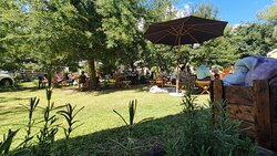 Saturdays under the oak trees. Bring your own wine!