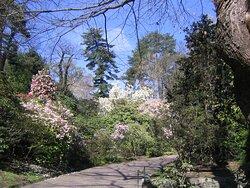 Verbania, Botanical Gardens of Villa Taranto