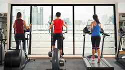 Guests on treadmills at the AvaniFit Health Club