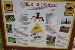 Aliens in NIagara