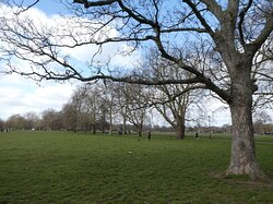 Clapham Common: a large open space