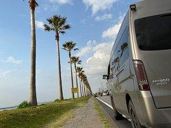 千葉県袖ヶ浦海浜公園手前の千葉フォルニアと呼ばれるスポット。 パッと見、日本じゃない感じが映え映えです。