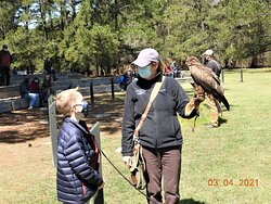 The Birds of Prey handlers are great with questioning children!
